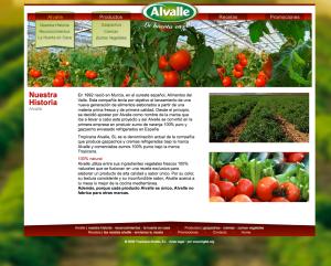 Web de Alvalle